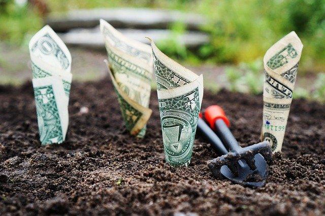 Une Startup bien investie peut sortir d'une école de commerce