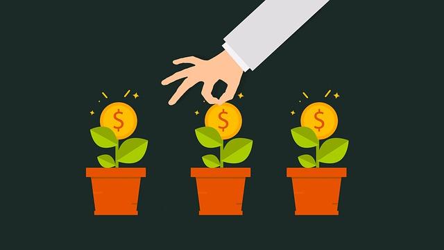 La Silicon Valley fournit souvent des investissements pour lever des fonds